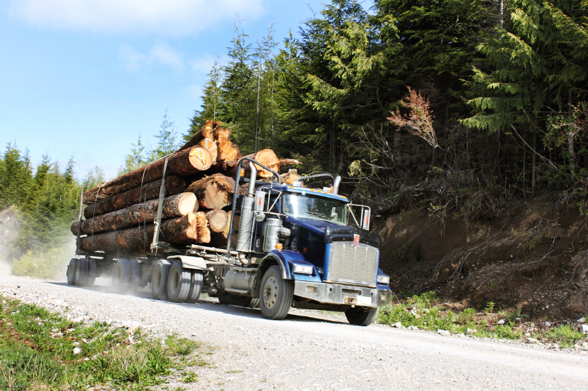 logging truck on gravel road